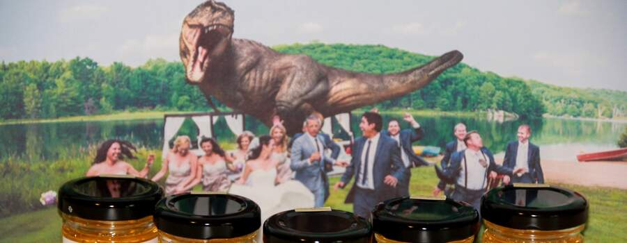 Mariage de Marie et Joss avec leur T-Rex !
