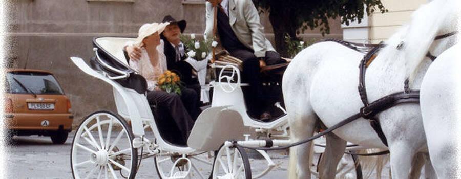 Beispiel: Die Kutsche für Ihren großen Tag, Foto: Fiaker Wien.