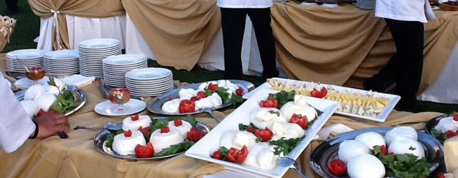 Angelucci Catering