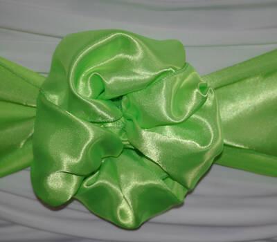 Satin Schleife Apfel grün