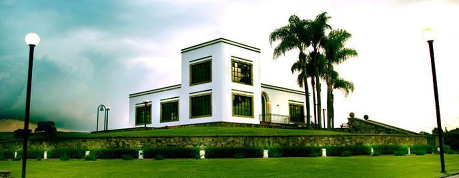 Terraza/jardín para eventos - Foto El Cerrito