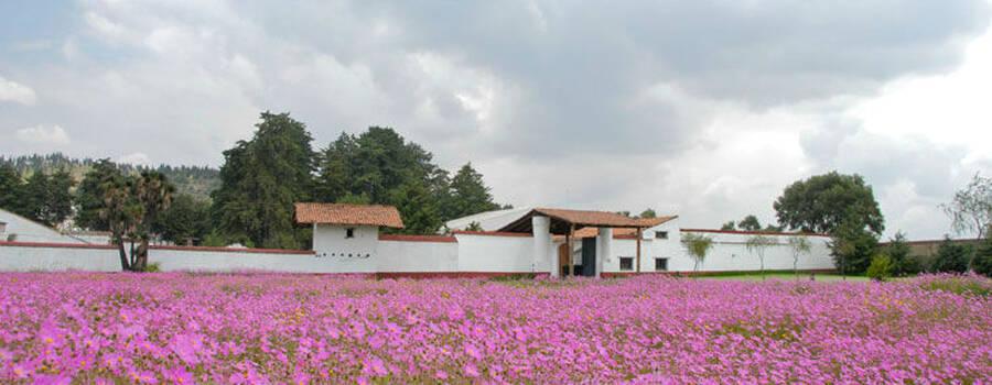 Hacienda Serratón, lugar para celebrar tu boda en el Estado de México