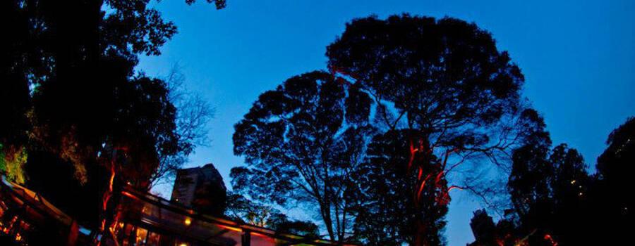 Parque Burle Marx. Foto:Anna Quat e Fabio Laub