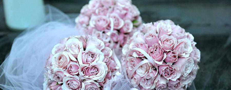 Tudo São Flores