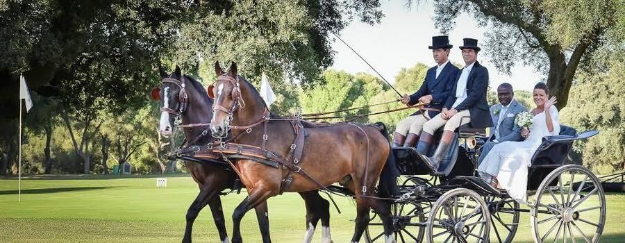 Llegada en coches de caballos