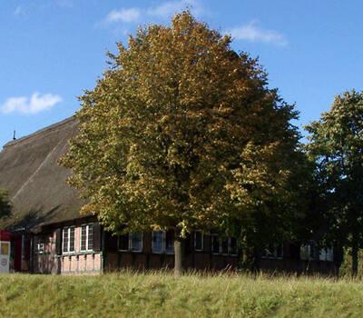 Beispiel: Drathenhof Außenansicht, Foto: Drathenhof.