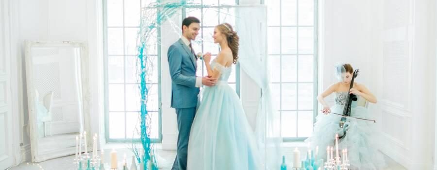электросвиолончель соло - музыкальное сопровождение свадебного торжества