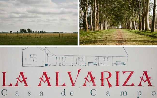 Fotos: ALFAMAS