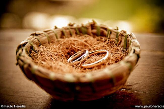 Alianças no ninho. Foto: Paulo Herédia