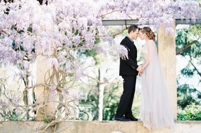10 лучших цветов: украсьте вашу свадьбу, ваш дом, вашу жизнь!