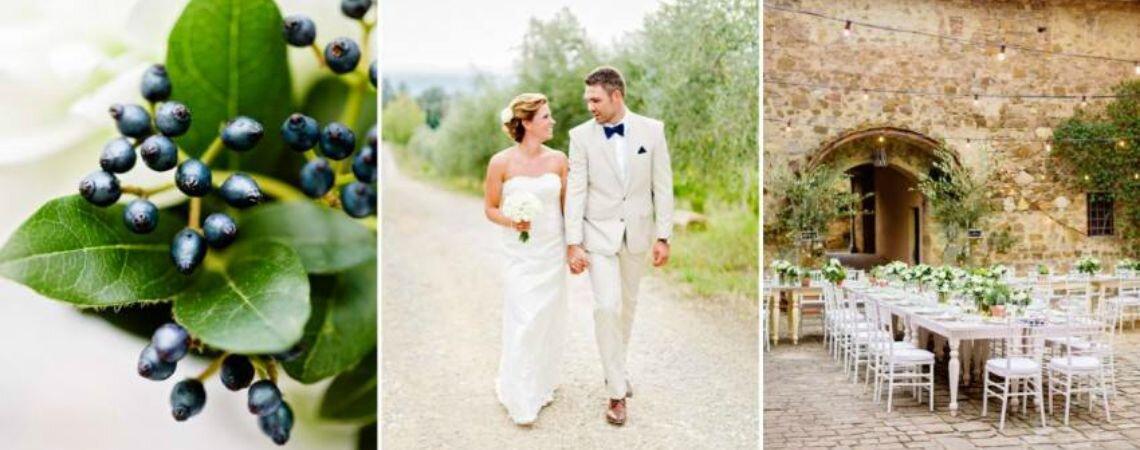 In cerca di una bomboniera originale ed ecofriendly per il tuo matrimonio? Pianta un albero con Treedom!