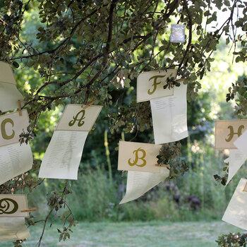 Zoek je zitplaats op de bruiloft: geweldige ideeën voor de plattegrond van het plaatsen van gasten.