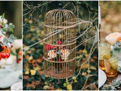 Ode à l'automne avec ce shooting intime et romantique au coeur de la forêt