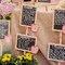 Ideias para marcar o lugar dos convidados no seu casamento. Foto: Sara Lobla