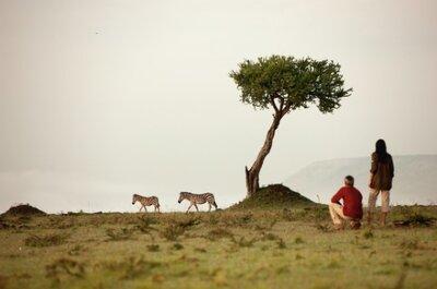 Tanzania: naturaleza en estado puro