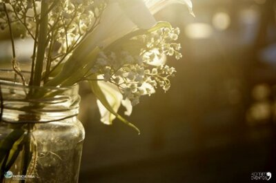 Decorazioni per matrimonio 2015: ritorno all'Armonia della Natura