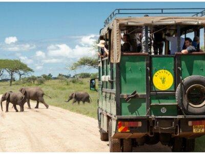 Lunas de miel desconocidas, aventureras y solidarias: ¡descubre África!