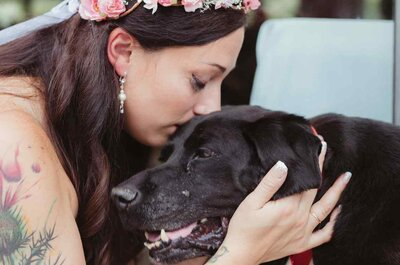 El amor puede superarlo todo: ¡Mira lo que hizo este perro! Te robará unas lágrimas