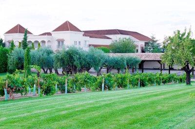 Celebra una boda diferente entre olivares y viñedos en Bodegas y Viñedos Casa del Valle