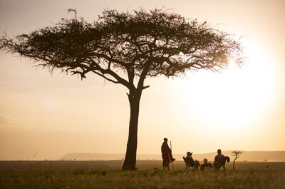 How to organise an unforgettable honeymoon: A dream tour through the real Africa!