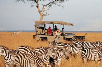 A personalised honeymoon in Africa from Enchanting Travels