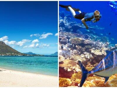 Franse cultuur met een Indisch hart: Mauritius: dé bestemming voor een huwelijksreis op het strand