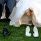Originelle Hochzeitsfotos von echten Brautpaaren