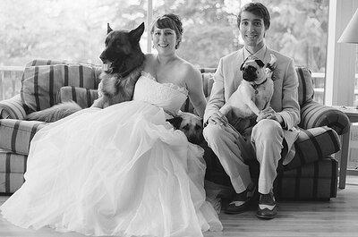 Animales en las bodas: perros y matrimonio