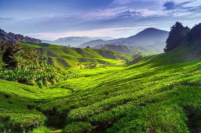 Entdecken Sie ein neues Paradies bei einer Hochzeitsreise nach Malaysia