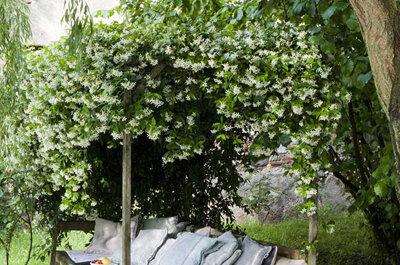 6 ideas románticas de decoración para una boda en jardín
