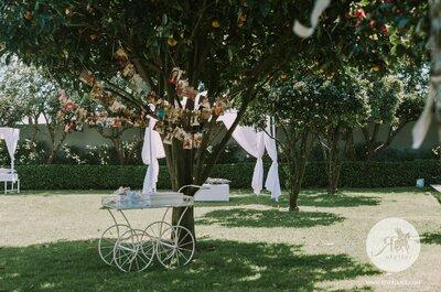 Casamento ao pequeno-almoço: 4 dicas essenciais para ser um êxito memorável!