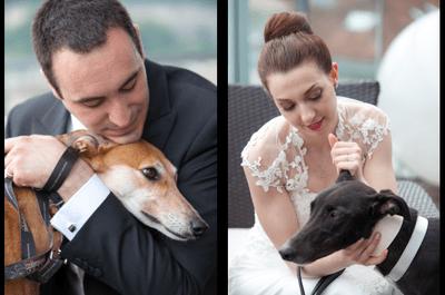 Scene da un matrimonio ... a 4