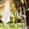 Make a Wish! Rustic Wedding. Fotografia: Pedro Bento Photography