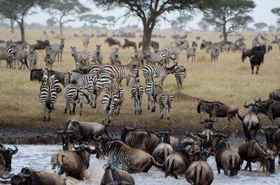La Luna di miele in Africa, tra natura incontaminata e mille comodità