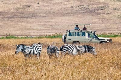 Disfruta de un viaje de novios aventurero y relajante: Safari Jambo gracias a Nautalia