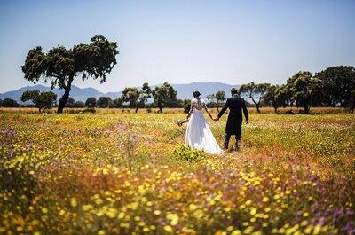 ¿Qué tener en cuenta para contratar a una wedding planner? ¡3 detalles importantes!