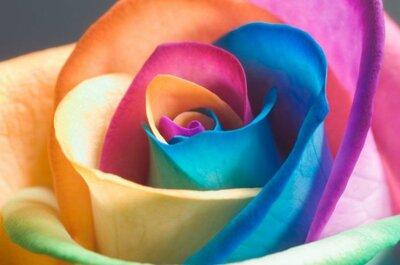 Il significato dei colori per decorare al meglio il vostro sito web del matrimonio...e non solo!
