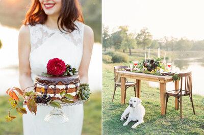 Animais nas fotos de casamento: dos mais comuns aos mais exóticos! Apoiamos a ideia!