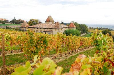 Un mariage au pays du Beaujolais