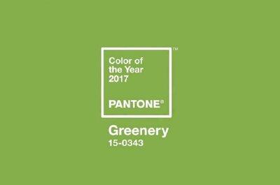 Já conhece a cor Pantone para 2017?