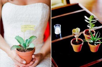 Decoración con plantas y flores naturales para boda en la ciudad