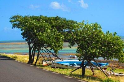 Lune de miel extra : l'Ile Rodrigues, perle immaculée de l'Océan Indien