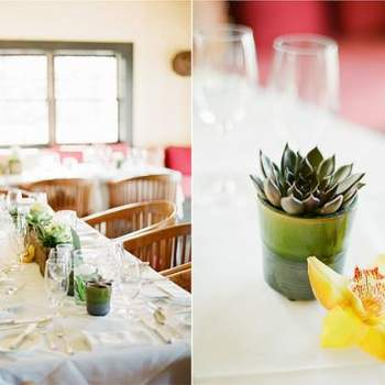 Decor Highlight: Succulents for your Wedding