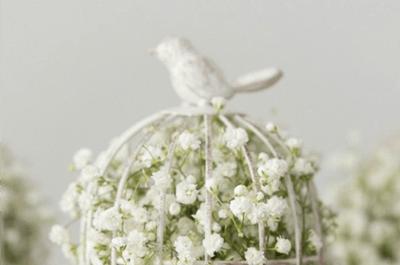 Hochzeitsdekoration mit Vintage Vogelkäfigen: Flugs zum perfekten Hochzeitsmotto!