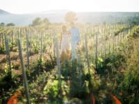 Se marier en Provence : LE mini guide pour un mariage sublimissime !