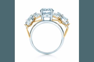 Verlobungsringe von Tiffany&Co! Bei diesen Designs wird jede Dame schwach!