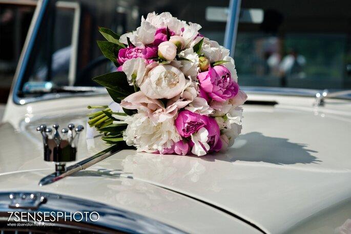7sensephoto.com