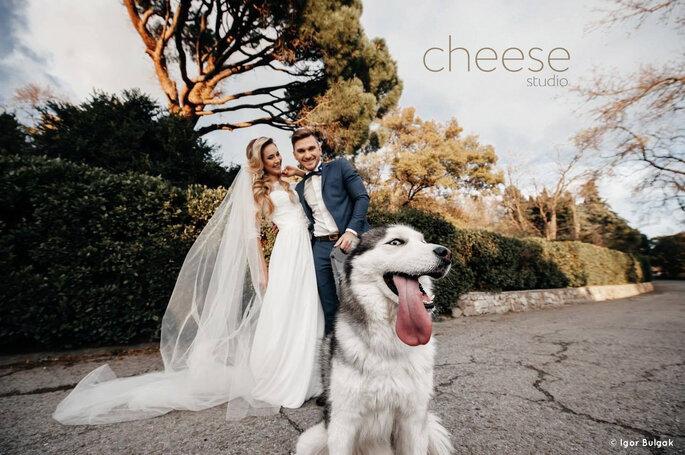 Cheese Studio