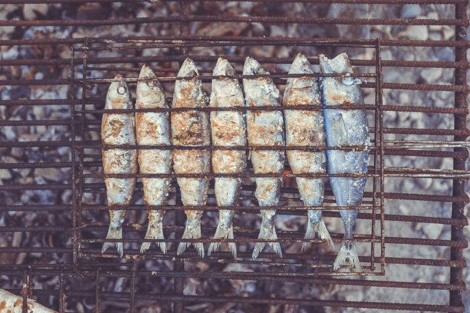 sardinhas