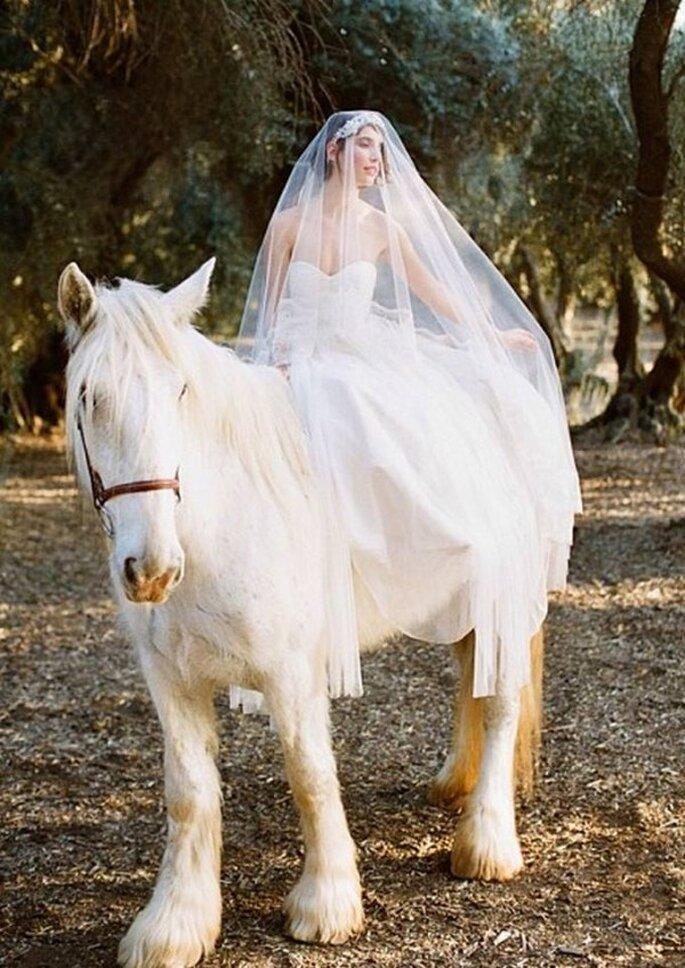 La belleza de las novias veladas - Foto Erica Elizabeth Designs